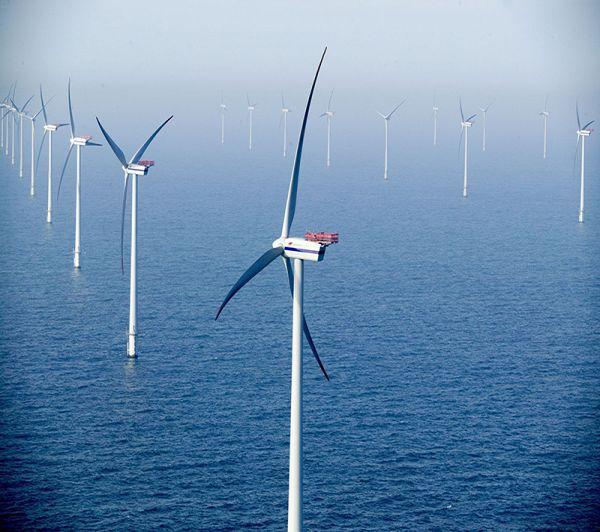 Một hệ thống sản xuất năng lượng gió trên biển. Ảnh: Saferenvironment
