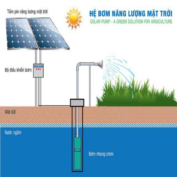 Bơm nước dùng năng lượng mặt trời